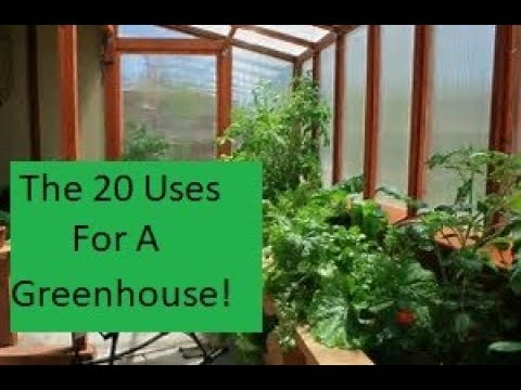 20 FABULOUS Reasons To Have a Greenhouse!!