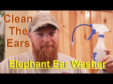 Elephant Ear Washer