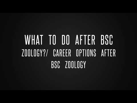 What to do after BSc Zoology? Career options after BSc zoology