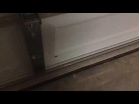 Spiders In garage
