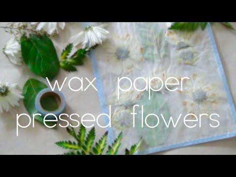 Wax paper pressed flowers