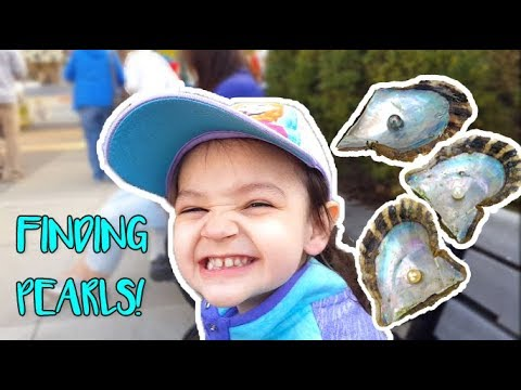 FINDING 70 PEARLS IN OYSTERS! | family vlog