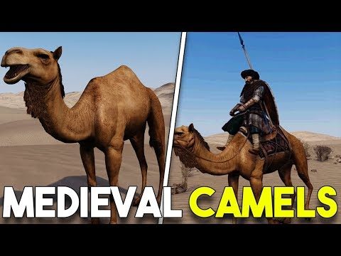 CAMELS IN BANNERLORD! - Mount and Blade II Bannerlord NEW UNITS