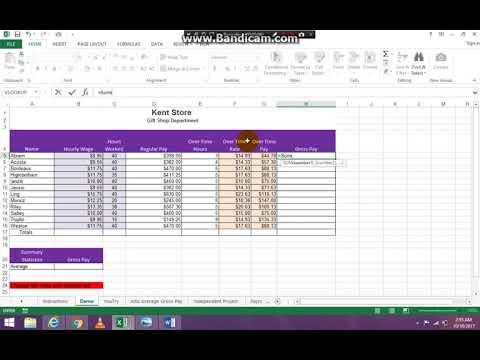 Basic  Excel Payroll