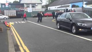 Download Foxford Goat Fair 2015 Video