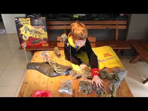 Jack making the Dinosaur skeleton set from the Perth Museum