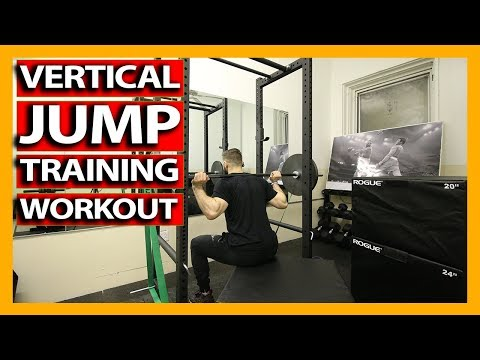 VERTICAL JUMP TRAINING WORKOUT (Full Follow Along) How To Increase Your Vertical Jump - DAY 1