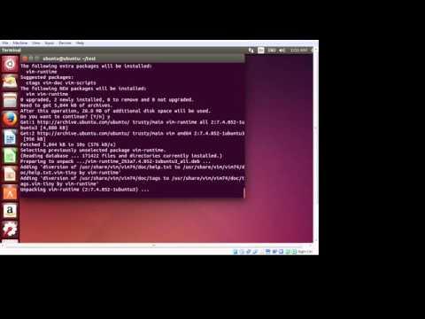 Linux Installing VIM Editor With apt-get package Management Command Line Program