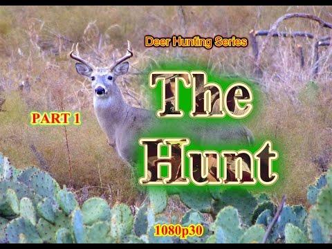 Deer Hunting Series: Part 1: THE HUNT