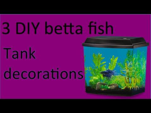 3 DIY Betta Fish Tank Decor