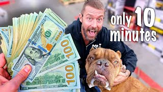 Giving $10,000 To A Homeless Dog