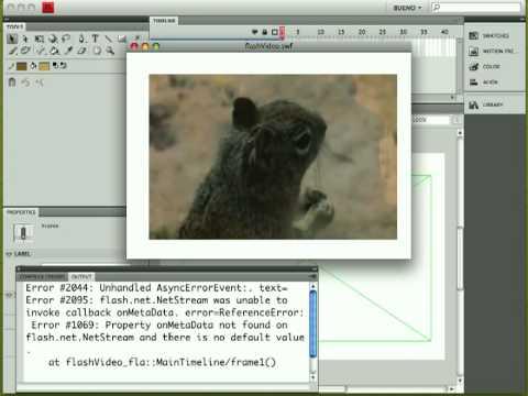 Flash Video via Actionscript 3