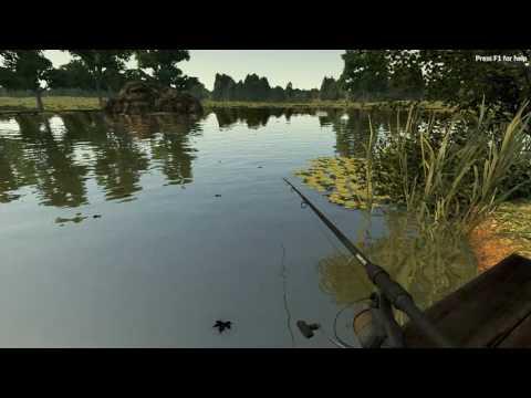 Carp Fishing Simulator - Surface fishing