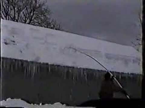 Phillips Snow Cutter - Better than a Roof Rake