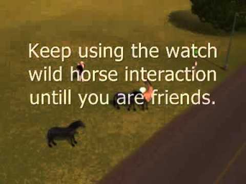 How to adopt a wild horse on Sims 3 Pets