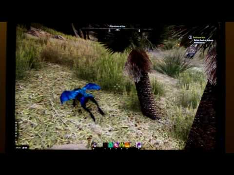 ESO: Play as a Pet