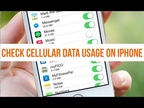 iPhone Tips and Tricks | How to Check Cellular Data Usage on iPhone