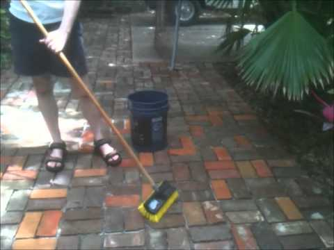 Cleaning the Patio Bricks (20 June 2012)