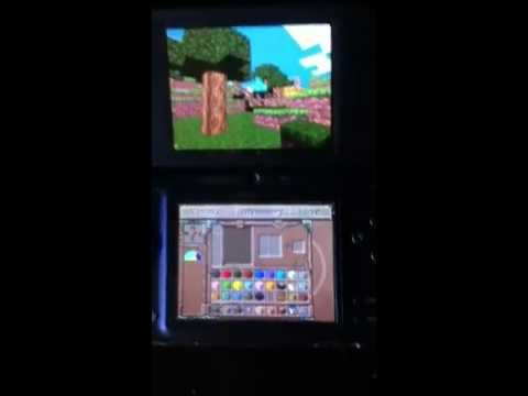 Real or Fake minecraft on DSi ?