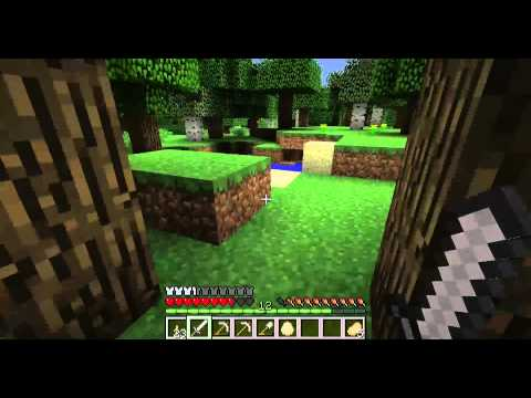 Minecraft: From Beginning to End Part 9