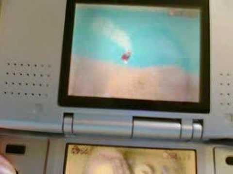 super mario 64 ds mario believes he can fly