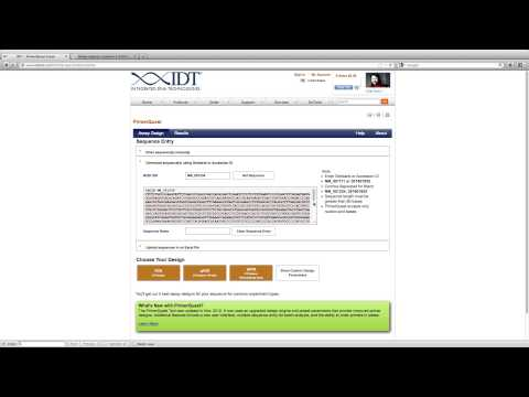How to Design qPCR Primers Spanning Exon Junctions Using PrimerQuest