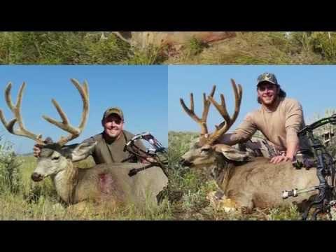 2015 Utah Archery Deer Hunt Public Land - 3 FOR 3