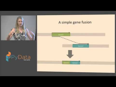 Maria Nattestad: How Big Data is transforming biology and how we are using Python to make sense