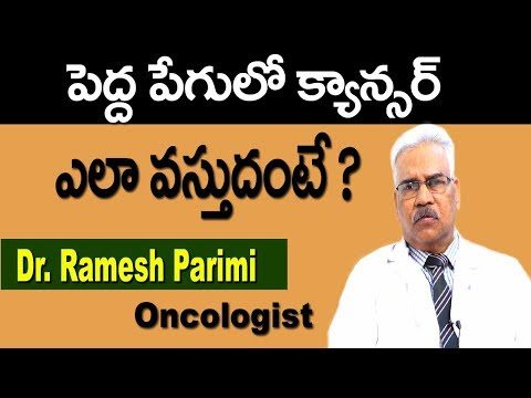 How Colon Cancer Starts   Reasons For Colorectal Cancer in Telugu   Health Tips   Doctors Tv Telugu
