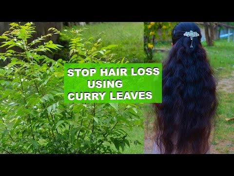 How To Stop Hair Loss Immediately & Regrow Hair Using Curry Leaves | 2 Top Ways !