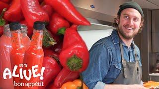 Brad Makes Fermented Hot Sauce | It's Alive | Bon Appétit
