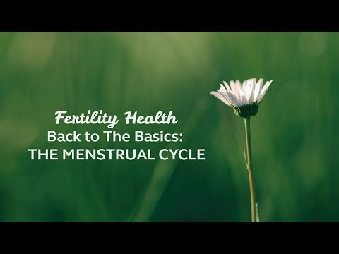 Fertility Health   Back to The Basics, The Menstrual Cycle