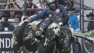 Pro Bull Rider Mason Lowe Dies During Competition