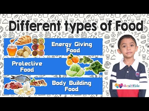 Types of Food | Kids educational videos | Science for Grade 2 | Food Pyramid