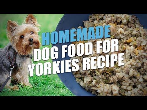 Homemade Dog Food for Yorkies Recipe