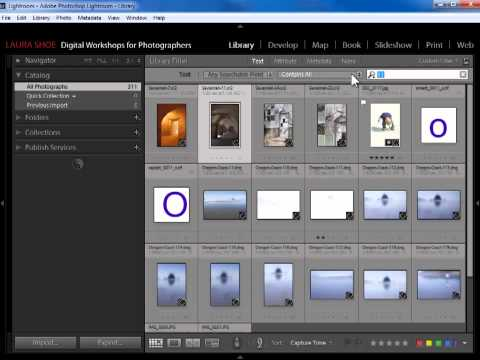 Search for and Find Your Photos in Lightroom Using Filters