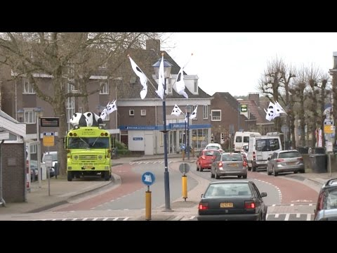People in Dutch Town Rhenen Look Forward to Arrival of Chinese Giant Pandas