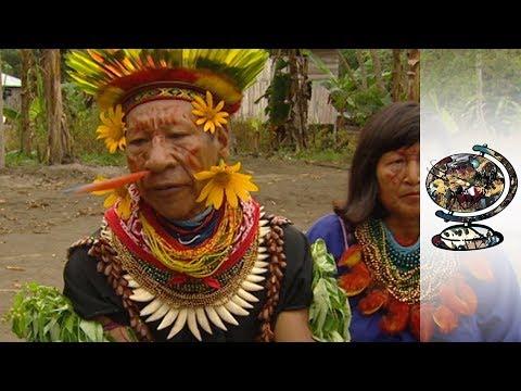 Texaco's Destruction Of The Amazon's Hidden Tribes