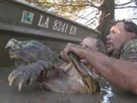 The Bayou Monster | Call of the Wildman