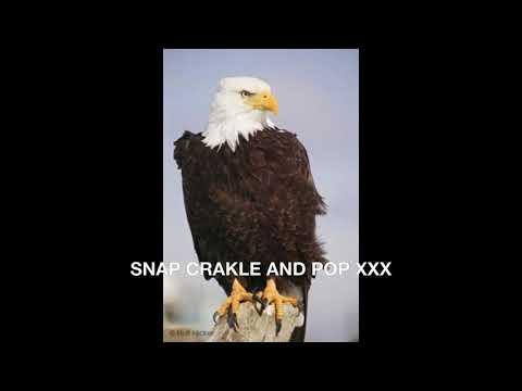 Xxx Mp4 SNAP CRAKLE AND POP XXX 3gp Sex