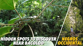 NEGROS OCCIDENTAL: HIDDEN SPOTS TO DISCOVER | Lost Juan