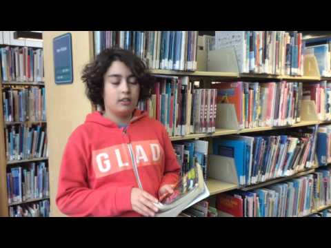 Behrad's book review