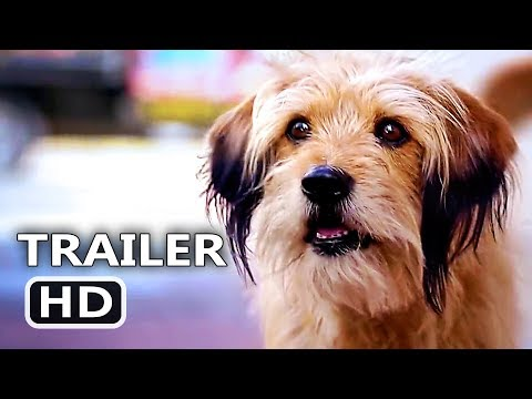 BENJI Trailer (2018) Emotional, Sentimental, Netflix Movie