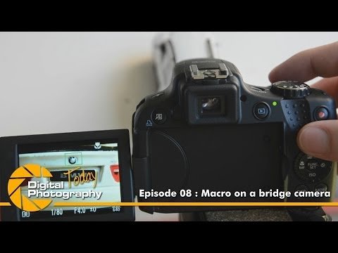 Episode - 08 - Macro on a bridge camera [Digital Photography Today]