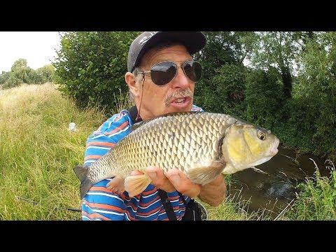 Catching Fish on the same Bait?? Fishing [VLOG #10}