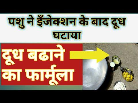 दूध बढाने का रामबाण देशी फार्मूला।Desi Formula For Increasing milk।Dudh Badane ke Desi nuskhe।