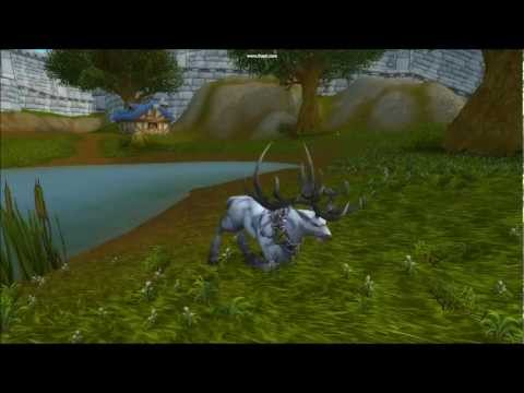[WOW] Druid Stag Form New Motions