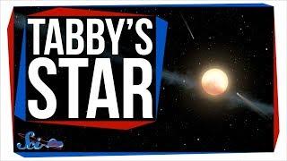 A New Idea About Tabby