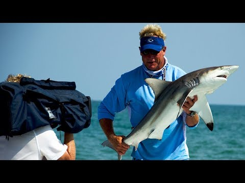 Blacktip Shark Fishing off the Beaches of Cape Canaveral Florida
