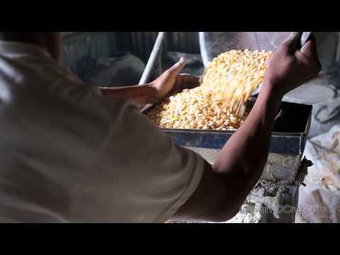 Making Pig Feed - Falam (Chin State) , Myanmar
